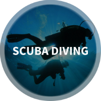 Find Scuba Diving, Scuba Certification & Diving Centers