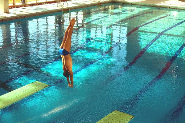 Miami Florida south Florida springboard diving diver