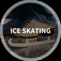 Find Ice Skating, Roller Skating, Figure Skating & Ice Rinks in Nashville, Tennessee